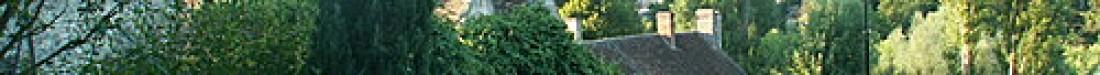 cropped-saintines112.jpg